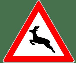 Achtung Wildwechsel: Dieses Schild warnt davor, dass Wildtiere die Fahrbahn kreuzen könnten.