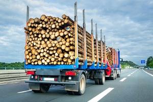 Wie viel darf die Anhängelast bei einem Lkw betragen?