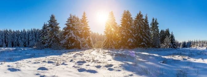Egal, ob Sommer oder Winter: Bei der Einreise nach Finnland ist einiges zu beachten.