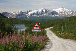 Geblitzt in Norwegen: Das Bußgeld ist höher als in Deutschland.