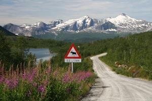 Geblitzt in Schweden: Die erlaubte Höchstgeschwindigkeit richtet sich in der Regel nach der Sicherheit der Straße.