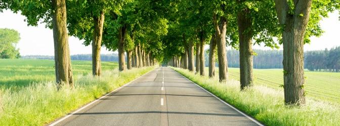 Auf einer Landstraße gibt es tolle Aussichten - teilweise jedoch auch spezielle Regeln.
