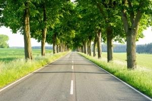 Wenn Sie mit dem Auto durch Finnland fahren, müssen Sie die entsprechenden Verkehrsregeln beachten.