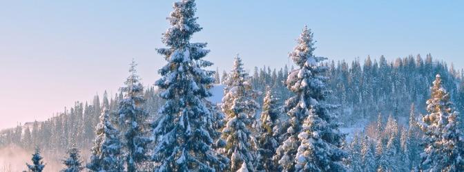 Das Motorrad muss im Winter den Witterungsbedingungen angepasst werden.