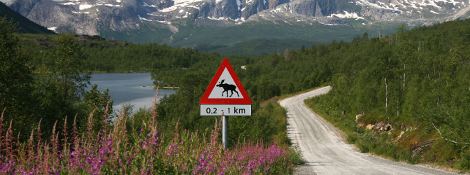 Vorsicht bei Fahrten in Schweden: Die Promillegrenze ist niedriger als in Deutschland.