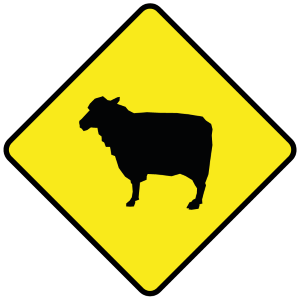 Sie sollten das Tempolimit in Irland nicht ausreizen, wenn Sie dieses Schild sehen. Schafe auf der Straße sind keine Seltenheit.