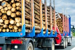 Überstehende Ladung kann auch bei Lkw zur Gefahr werden, wenn keine ausreichende Ladungssicherung gegeben ist.