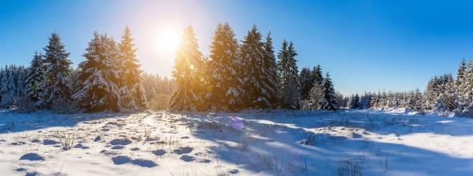Eine verbesserte Sichtbarkeit trägt zur Verkehrssicherheit im Winter bei.