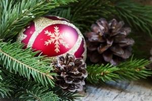 Nur wenn Sie Ihren Weihnachtsbaum richtig transportieren, kommt er auch heil bei Ihnen an.