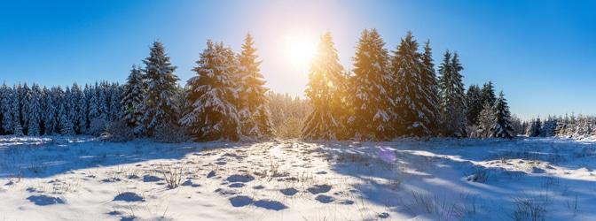 Winterreifen sind bei bestimmter Witterung Pflicht.
